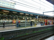 Suburban_Platforms_of_Central_Railway_Station_Sydney
