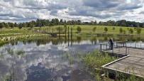 sydney_park_wetlands